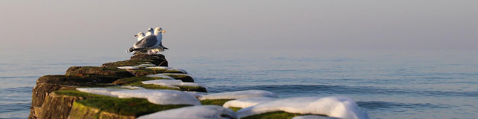 Winterromantik an der Ostsee buchen
